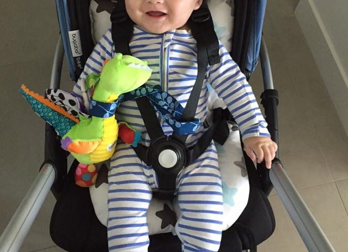 Baby Z at 5 months happy in his cushy pram liner from Korea fitted into bugaboo.